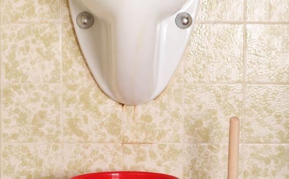 Urinal verstopft?