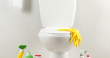 Produkte für die WC-Reinigung